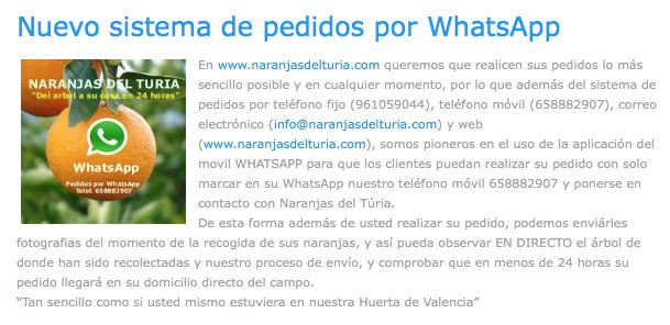 www.naranjasdelturia.com